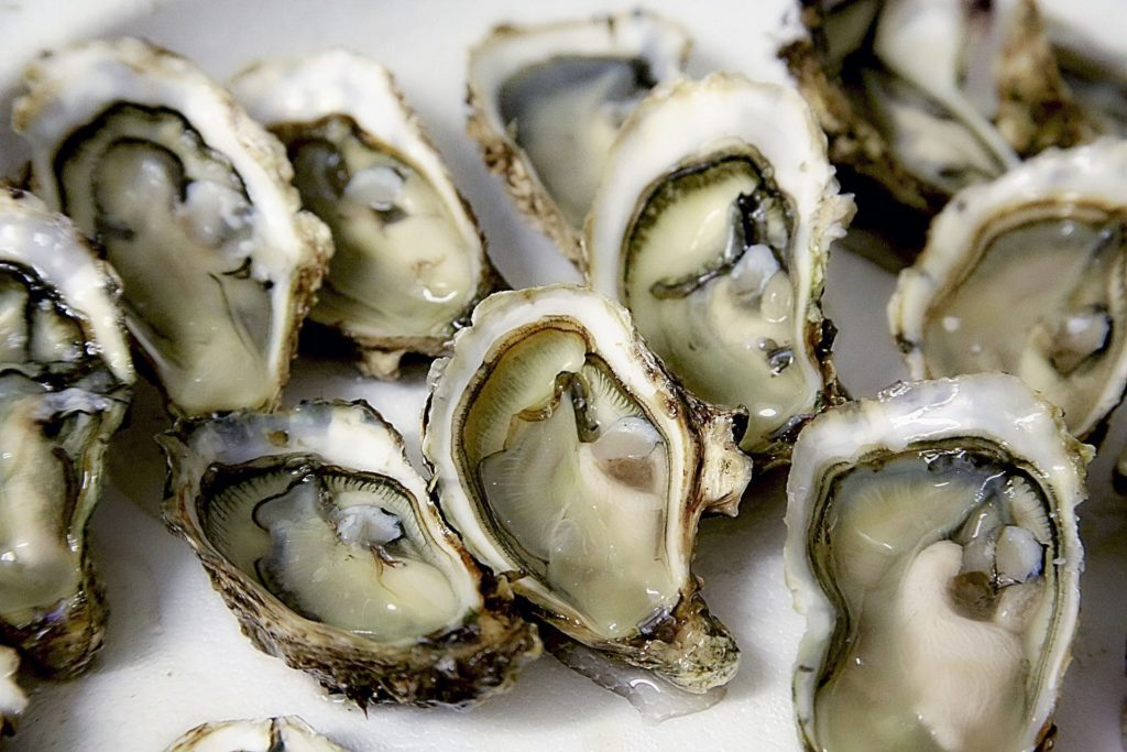 oyster is an omega 3 rich food